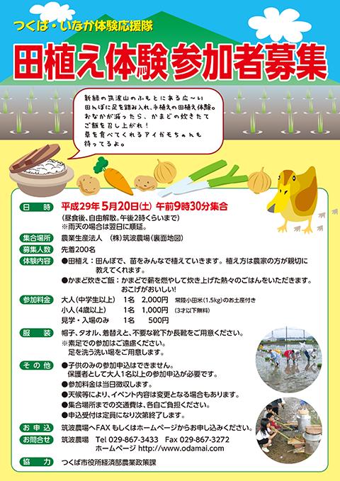 2017年田植え体験会